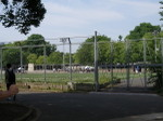 20100522_komazawa04_run14_hantaigaw