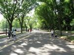 20100522_komazawa04_run18