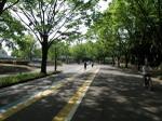 20100522_komazawa04_run19